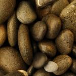 Rocksbest_small1