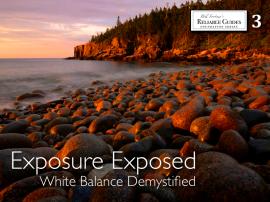 Exposure Exposed book cover