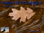 vision & technique - volume 2