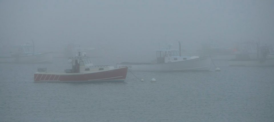 ships in fog one warmed small